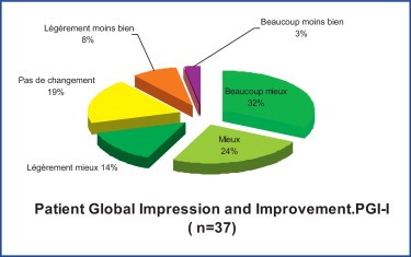 patient global impression of improvement pdf